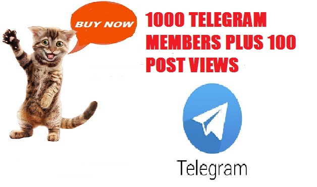 We WILL ADD 1,000 REAL Members to your TELEGRAM CHANN...