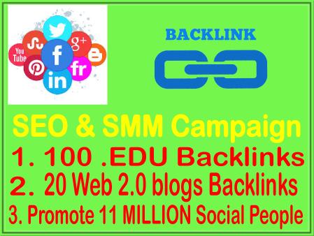 SEO & SMM Campaign- 100 EDU Backlinks-20 WEB2.0 Backlinks- Promote 11 Million Social fans