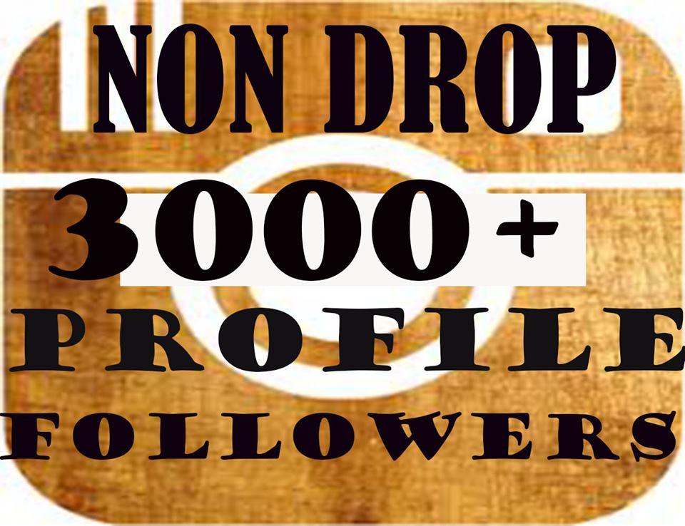 Provide 3000+Non Drop Social Profile Followers In 1-2 Hours