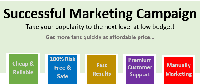Successful marketing plan - Pack 500