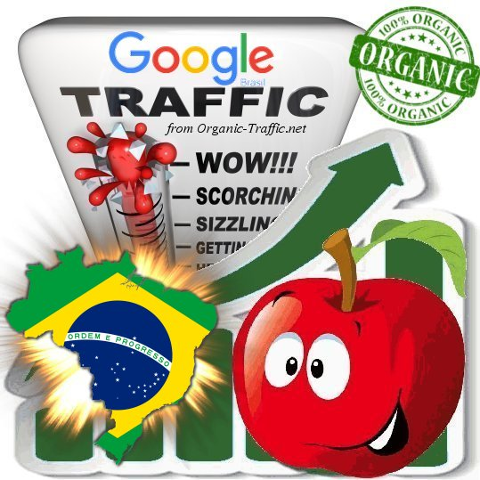 Brasilian Google Search Traffic