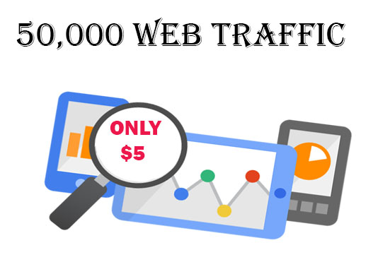 Drive 50,000 WEB TRAFFIC to you website or blog