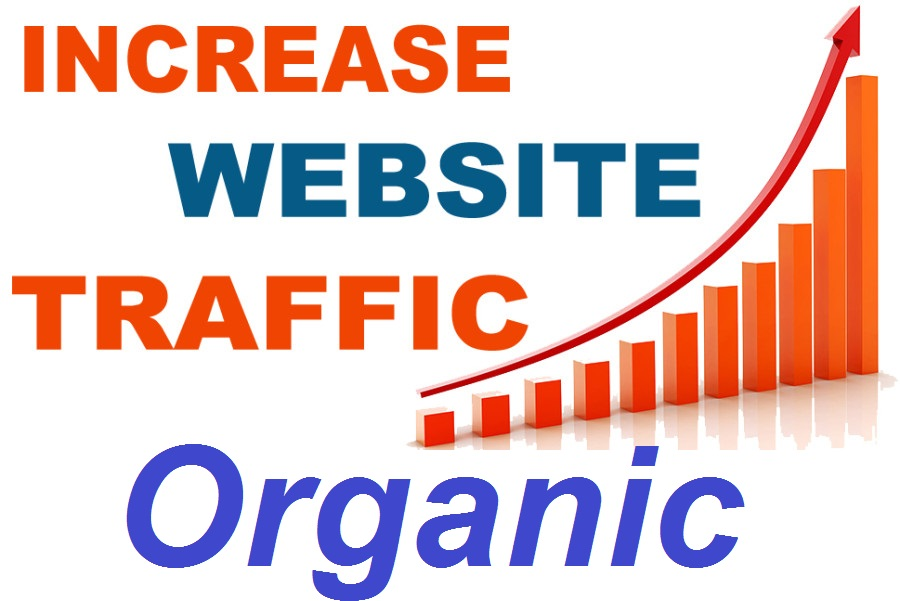 Special Offer Organic web traffic to Your WebSite 7500 Traffic