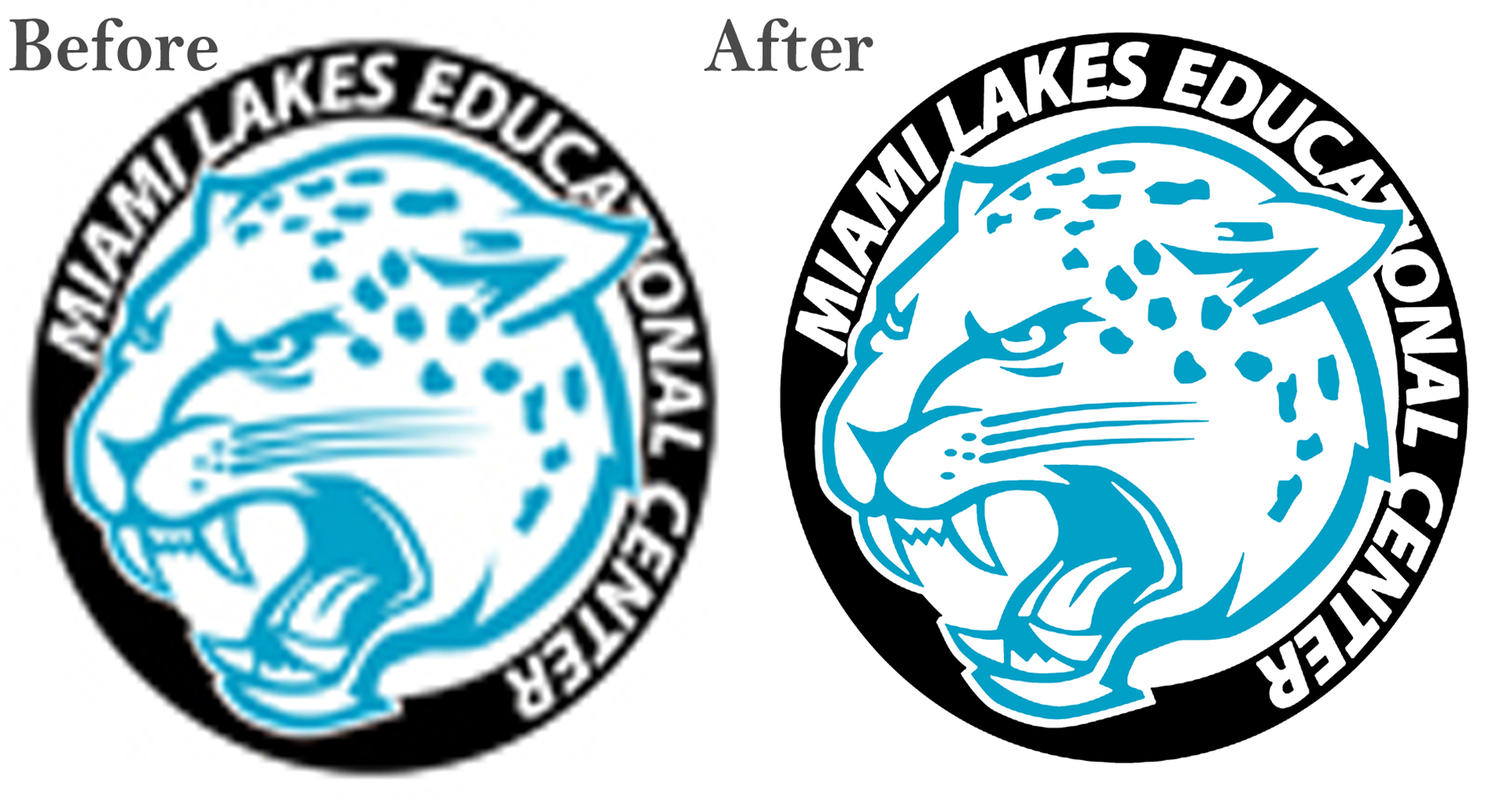 Vector Trace Your Logo Professionally