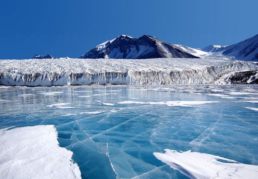 Why And How To Travel To Antarctica