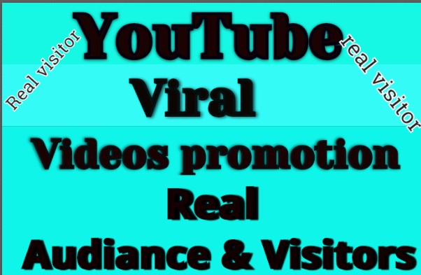 Get Instant Manually Do Video Promotion
