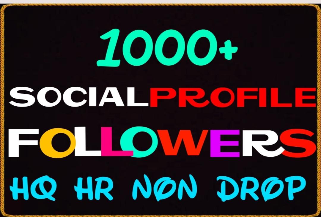 Add 1000+ Worldwide Super fast HQ Social Media Service Instantly