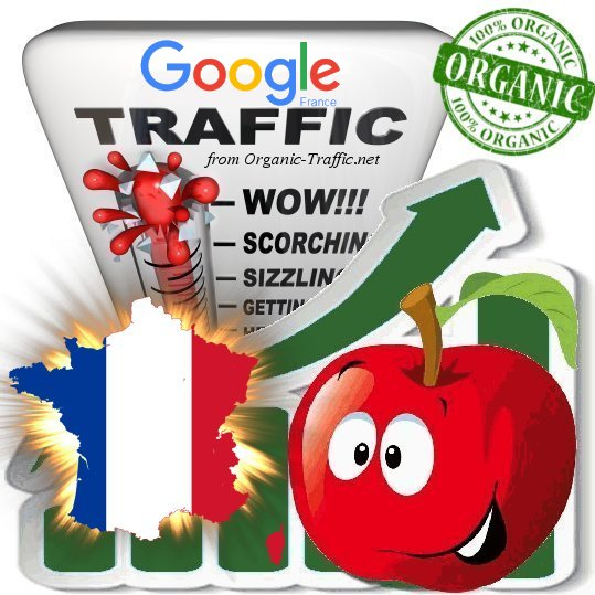 French Search Traffic from Google. fr