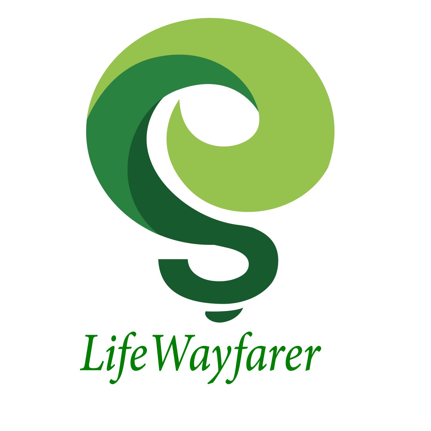 can Do Professional Modern Branding Logo Design