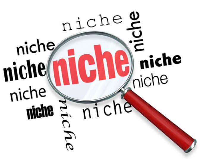 build 60 high quality niche relevant backlinks
