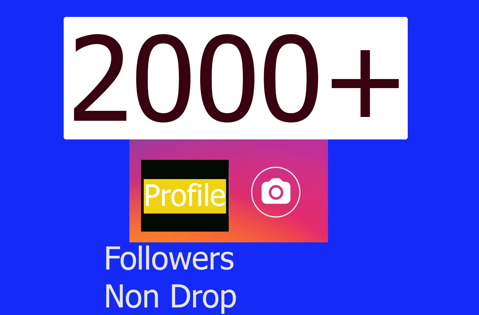 Non Drop 2000+ Profile Followers within 3-4H