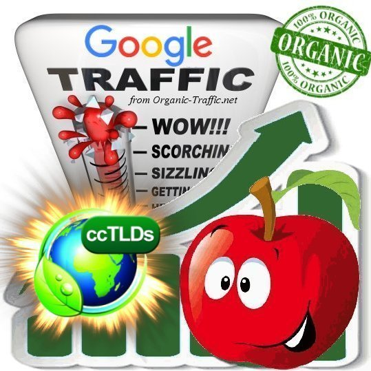 Quality Search Traffic from Google.com for 30 days