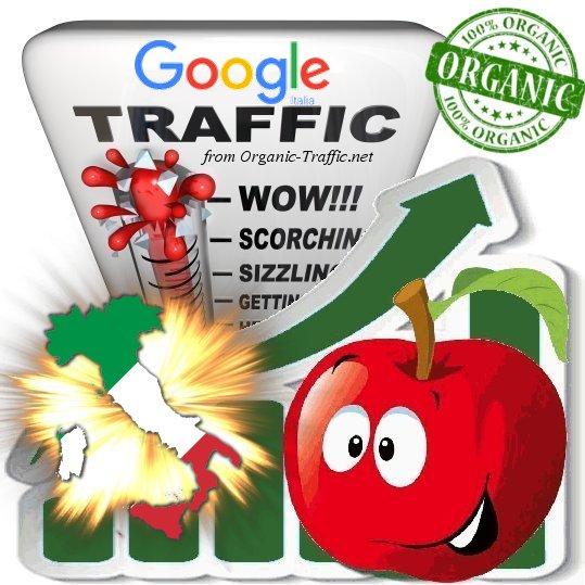 Italian Search Traffic from Google. it