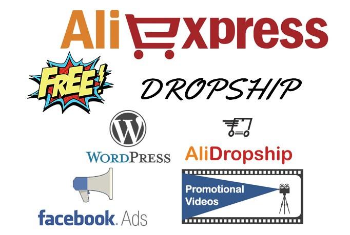 Make an dropshipping website in wordpress