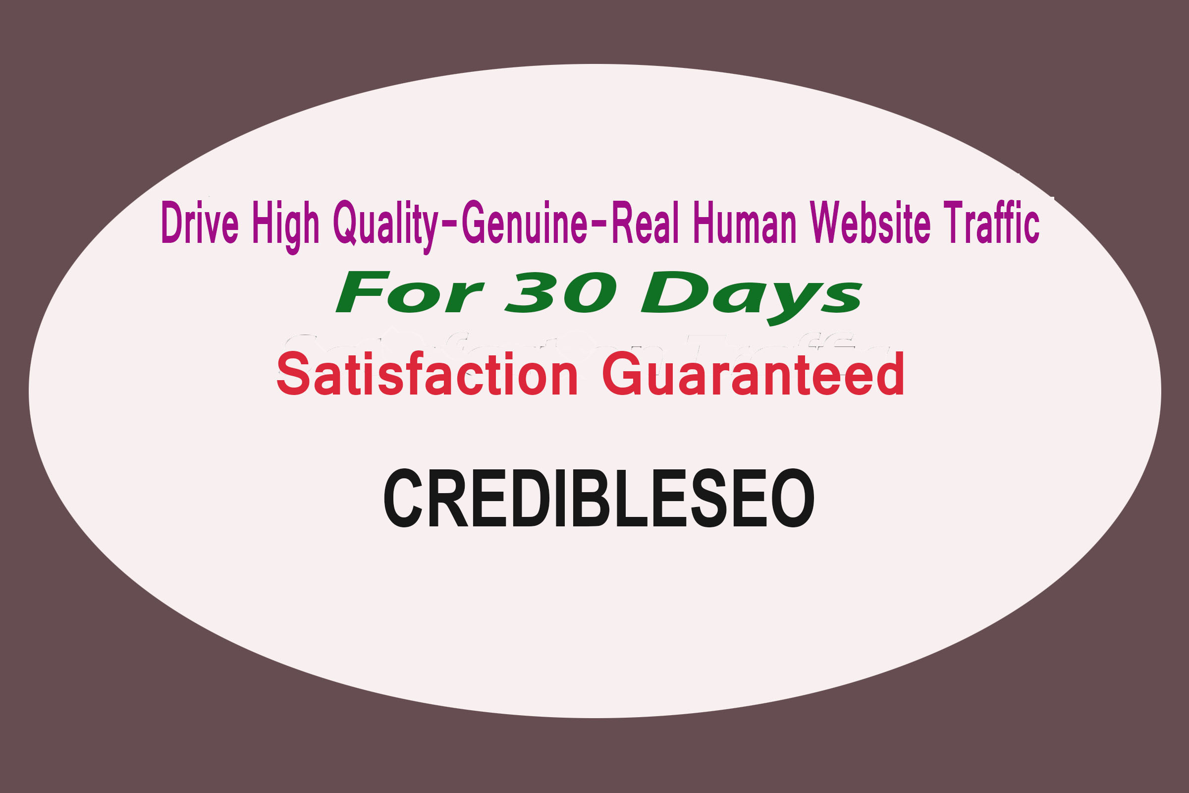 Provide High Quality, Genuine, Real Human Website Traffic Visitor For 30 Days