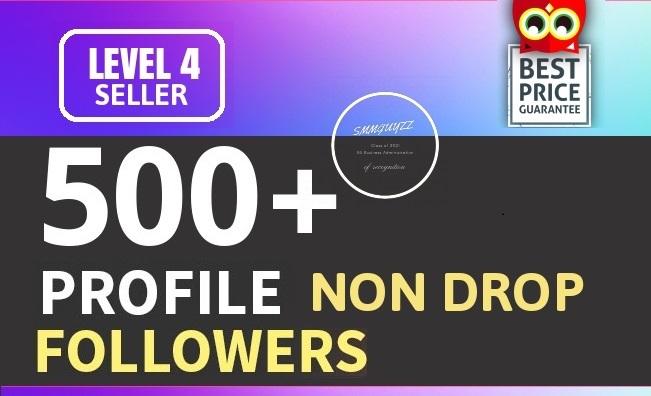 Add 500+ High Quality Fast Profile Followers