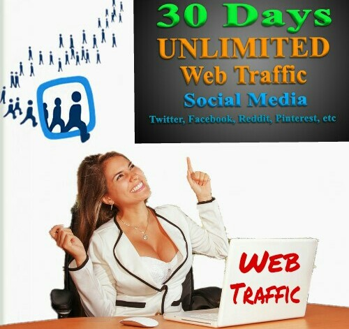 Drive 100,000 + Real traffic for your site.