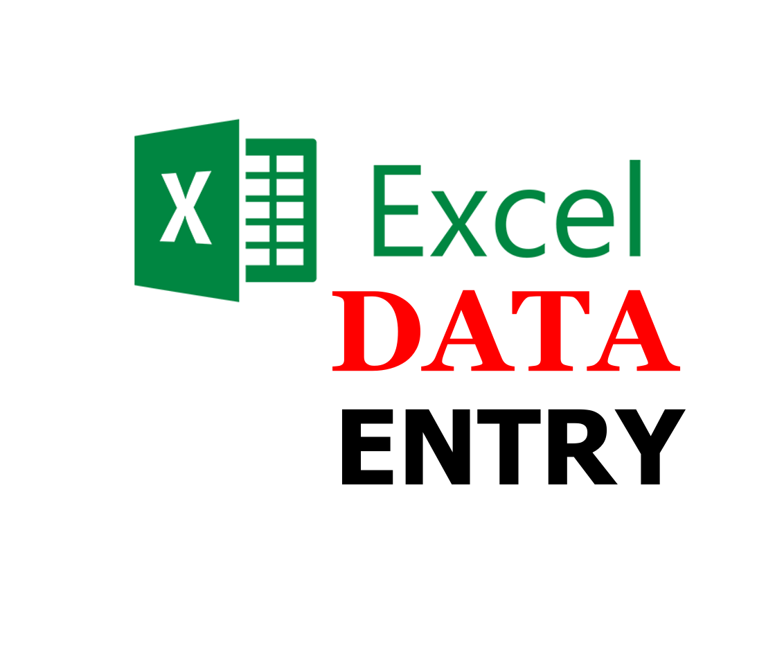 Do Any Kind of Excel data entry
