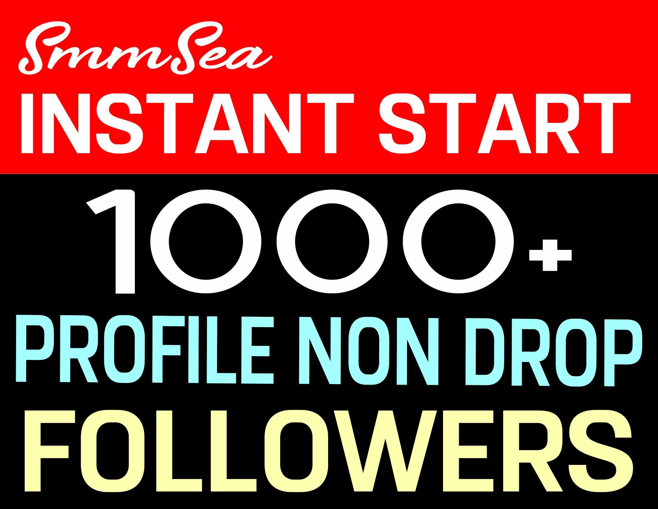 ADD 1000+ PROFILE FOLLOWERS HIGH QUALITY AND NON DROP - INSTANTLY