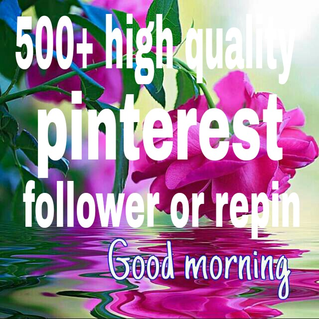 500+ pinterest followers or repin with profile picture and high quality