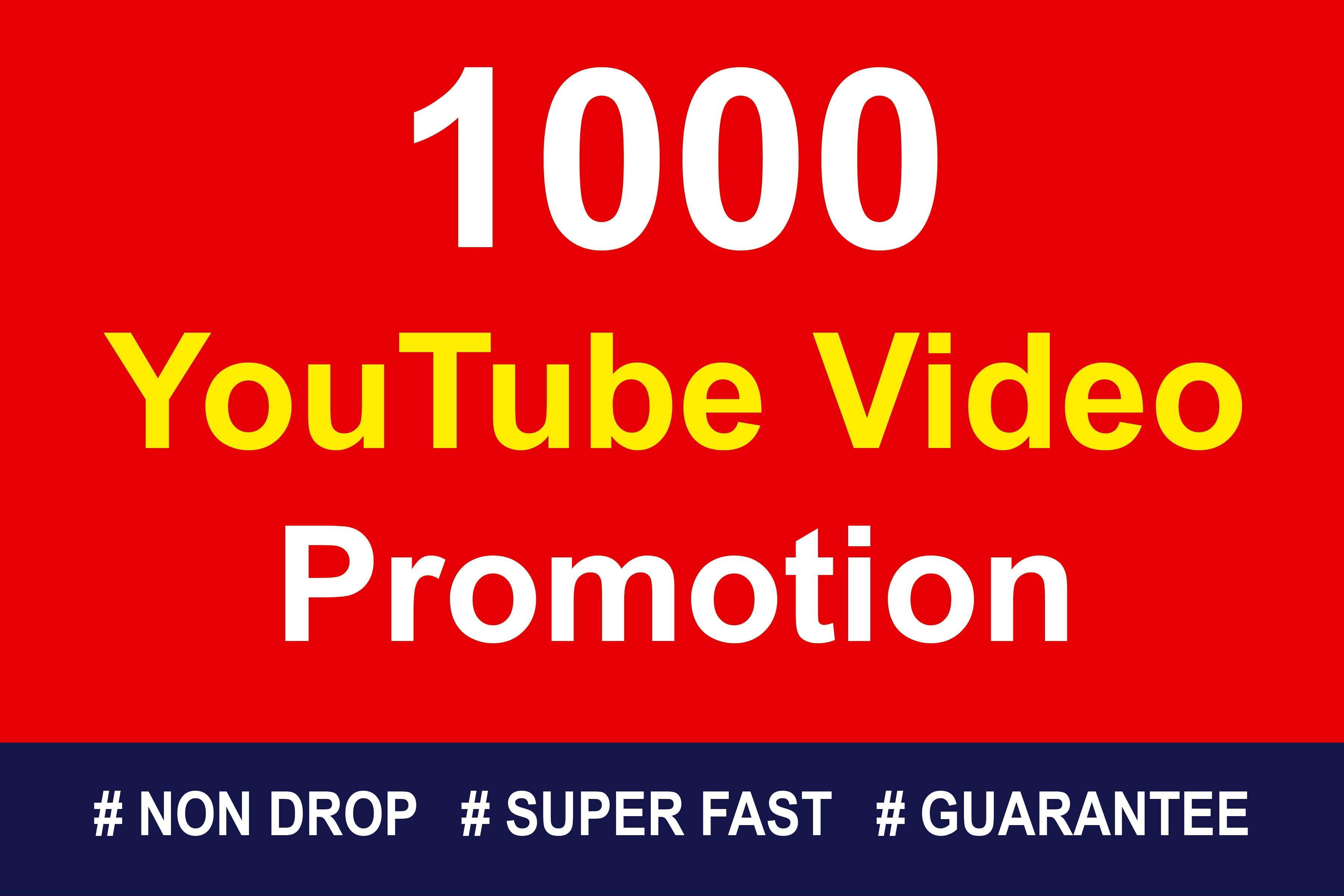 Organic-High-Quality-Video-Promotions-24-hrs-Delivery
