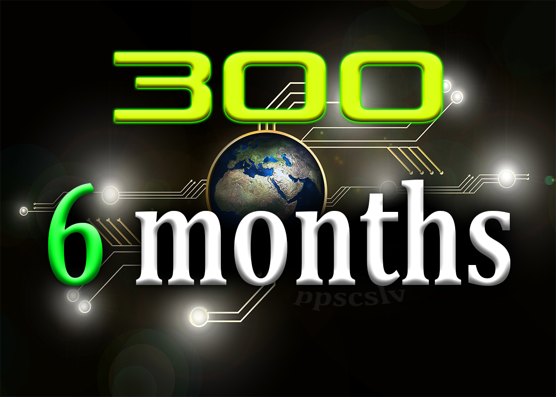 get up to 300 daily targeted visits for 6 months,  it's a web traffic service