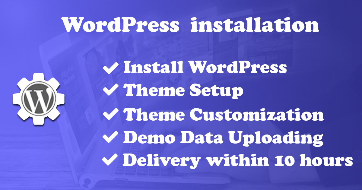 I will do WordPress installation,  theme setup,  plugin install,  basic seo