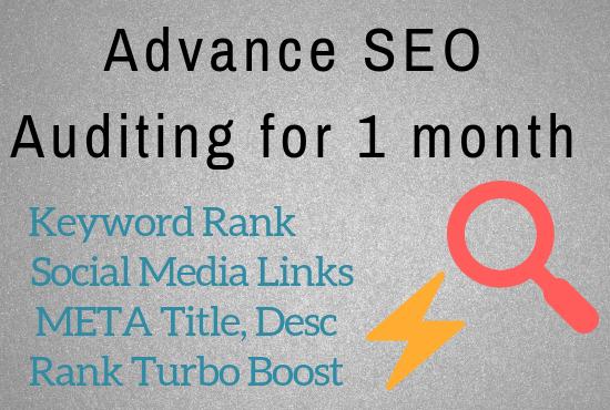 Do advance audit & SEO for 1 month