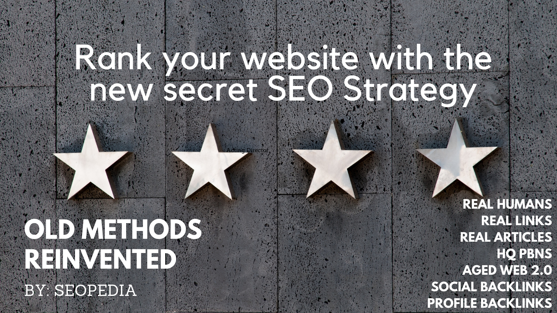 Beat your competitor with my Secret SEO and Social Backlinks Strategy ndash 1100 PBN