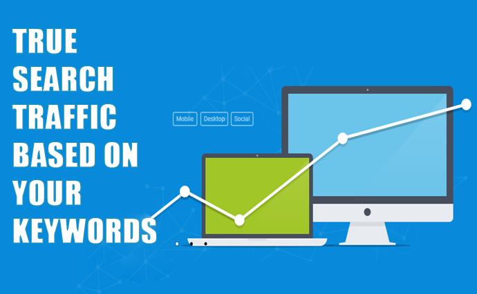 Get true search traffic under your keywords