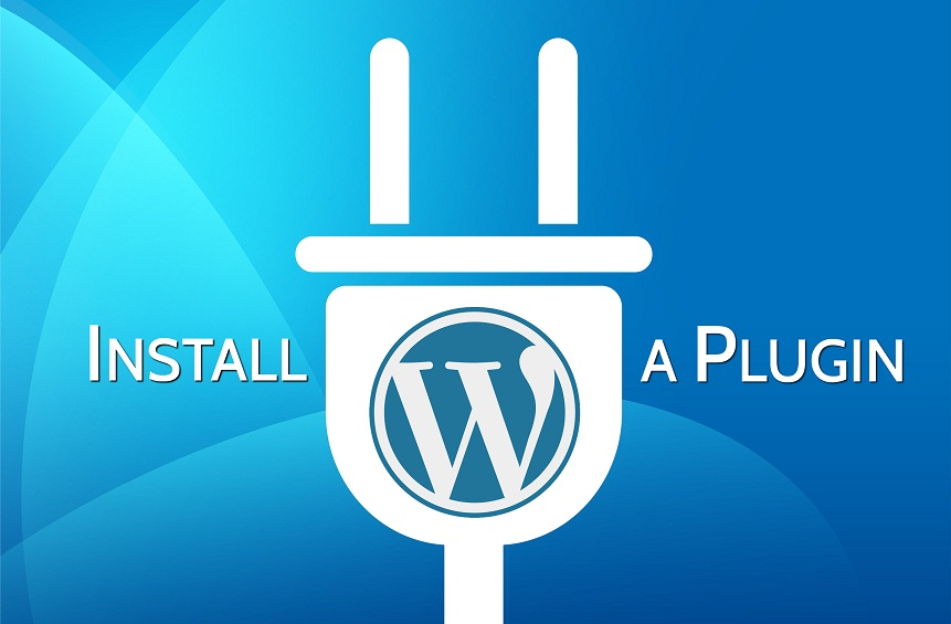 Install WordPress,  Theme,  Plugins In Your Site