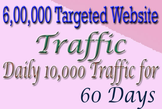 Drive 6, 00,000 Real Human Targeted Traffic To Your W...