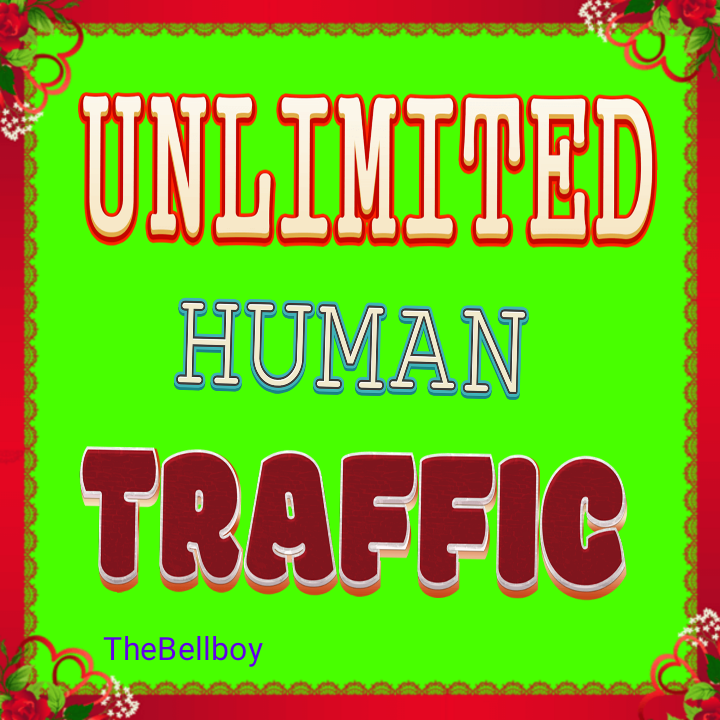 11,000+ Real Humans Traffic from USA