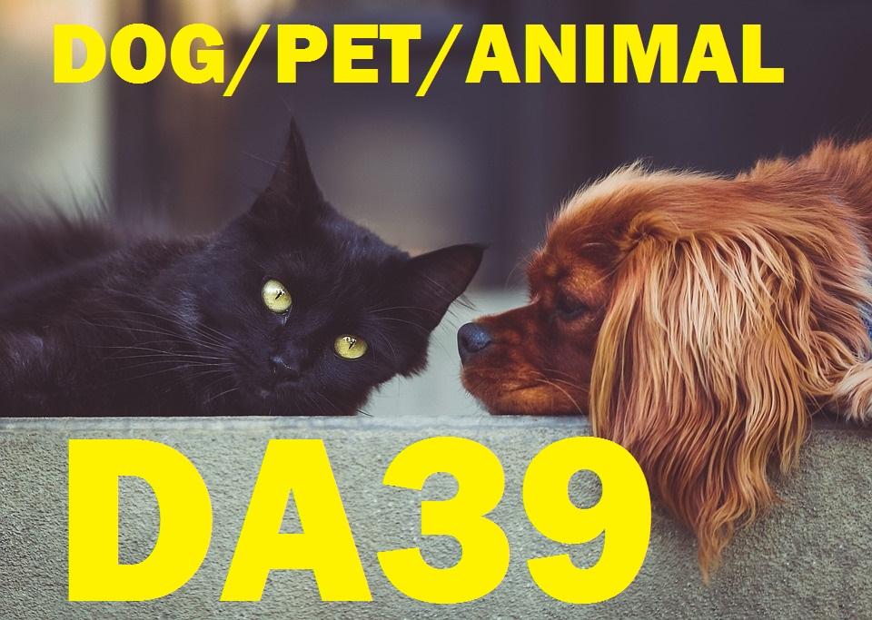 create and publish Best guest post on pet or animals and cat niche DA39 Blog