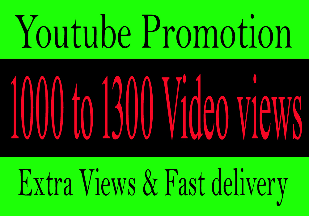 Youtube Video Promotion Drip Feed Referred From Social Sites Media Seo
