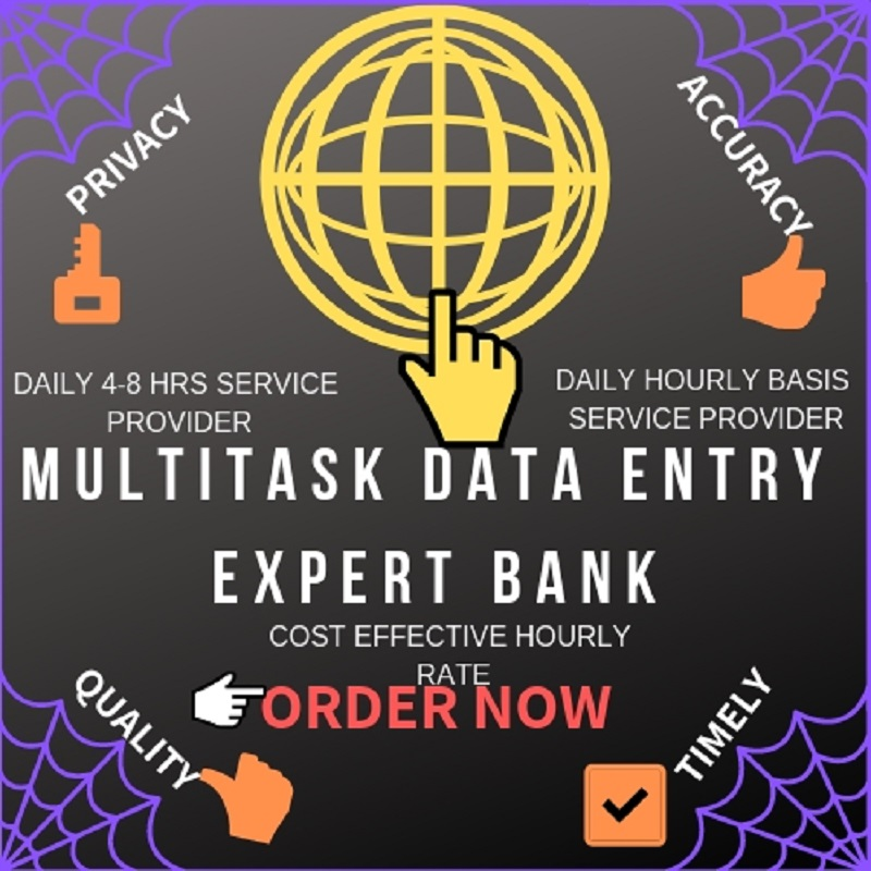 Do Multitask Data Entry Work Daily 8 hours & Per Hour