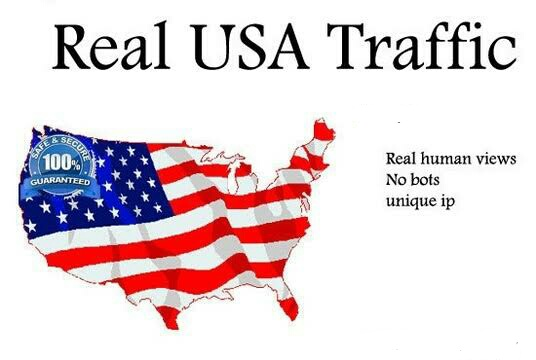 10000+ High Quality USA Human Traffic/Visitors for your website