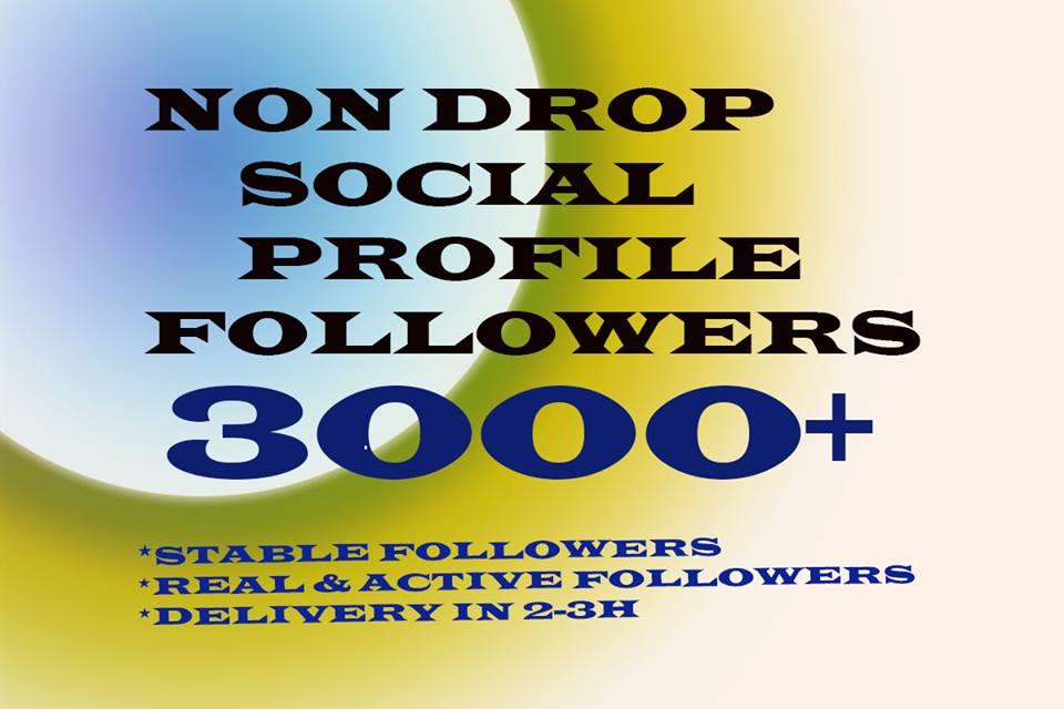 3000+ NON DROP Profile Followers Instant Start