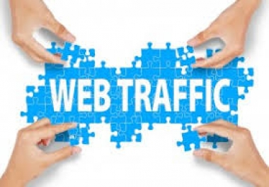 Drive 15000++ organic  traffic to your website