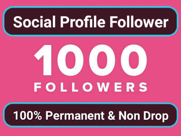 Super Fast 1000 High Quality Social Profile Followers...