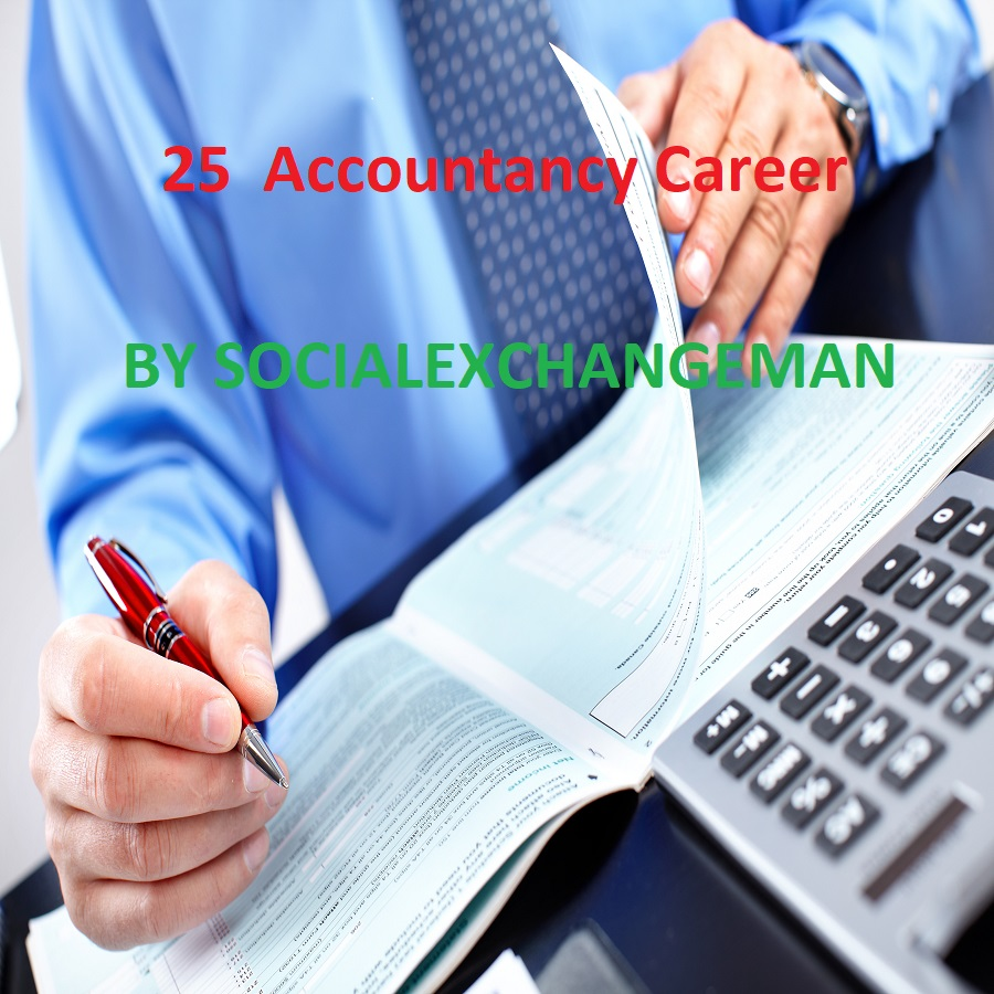 give you 25 Accountancy Career plr articles and up to 250 keywords