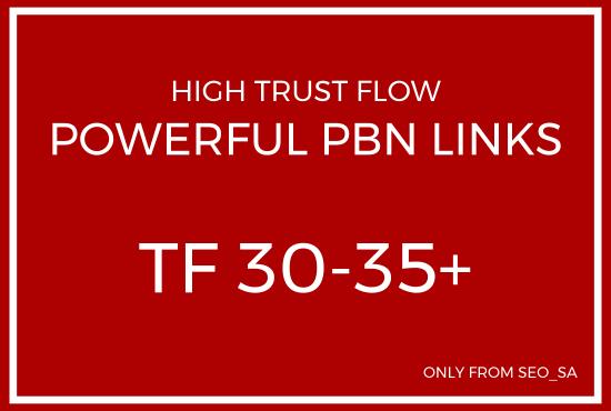 5 x Unique Domain High TF 30-35+ PBN Backlinks