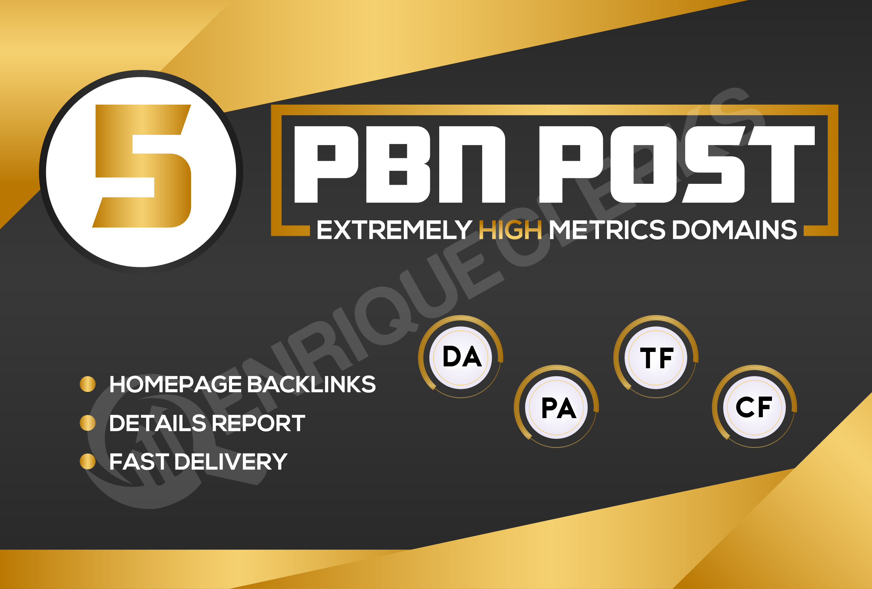 Build 5 PBN DA 30+ With 0 Spam Score Homepage Backlinks