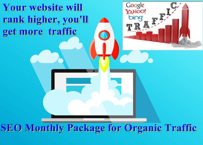 SEO Monthly Package for Organic Traffic White Hat SEO Services
