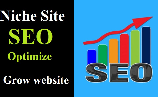 Niche website SEO optimize to SEO rank