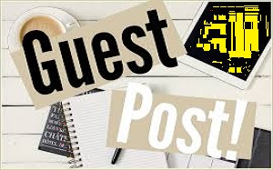 New Year Offer Business Product or Website Exposure Guest Post