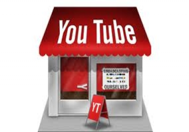 i need 2000 youtube views in 2 URL