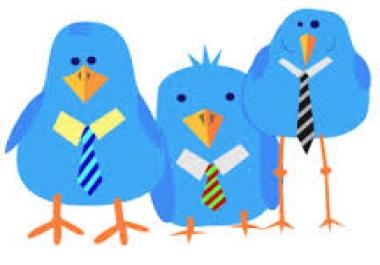 22000 twitter followers in 4 in one day