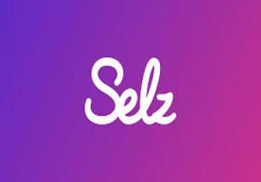 Fix my selz online store.
