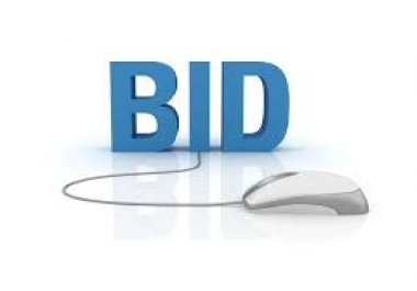 Someone bid on my Flippa listing I will promote you to over 100,000 people on Twitter